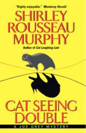 Cat Seeing Double cover