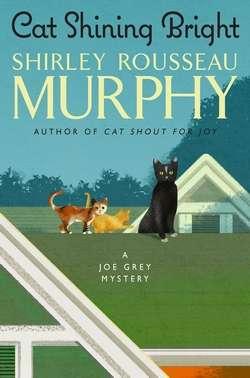 Joe Grey Cat Mysteries By Shirley Rousseau Murphy